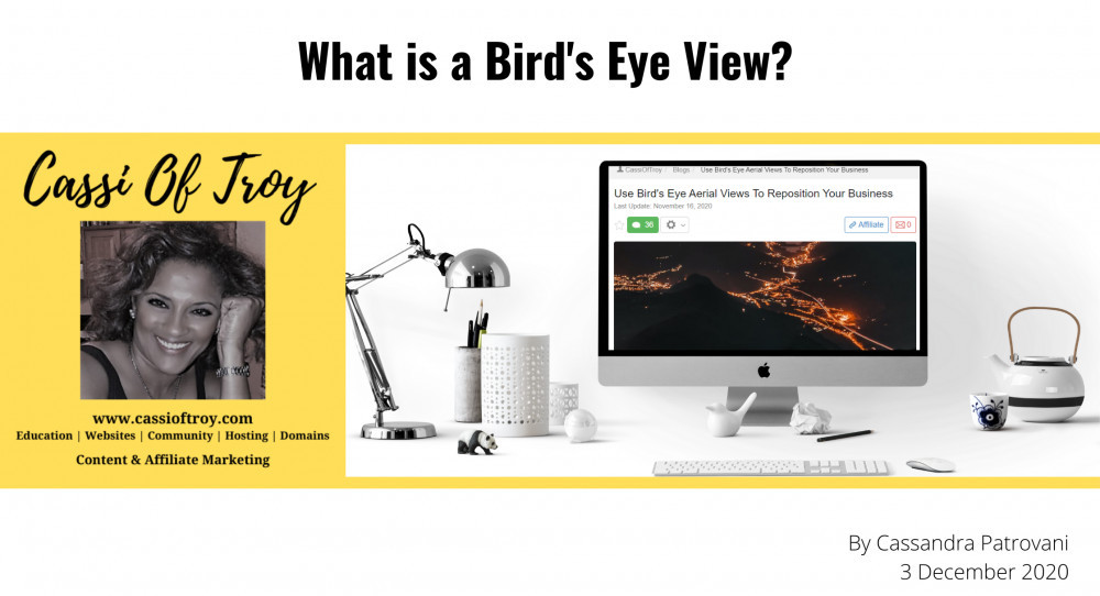 What is a Bird's Eye View?