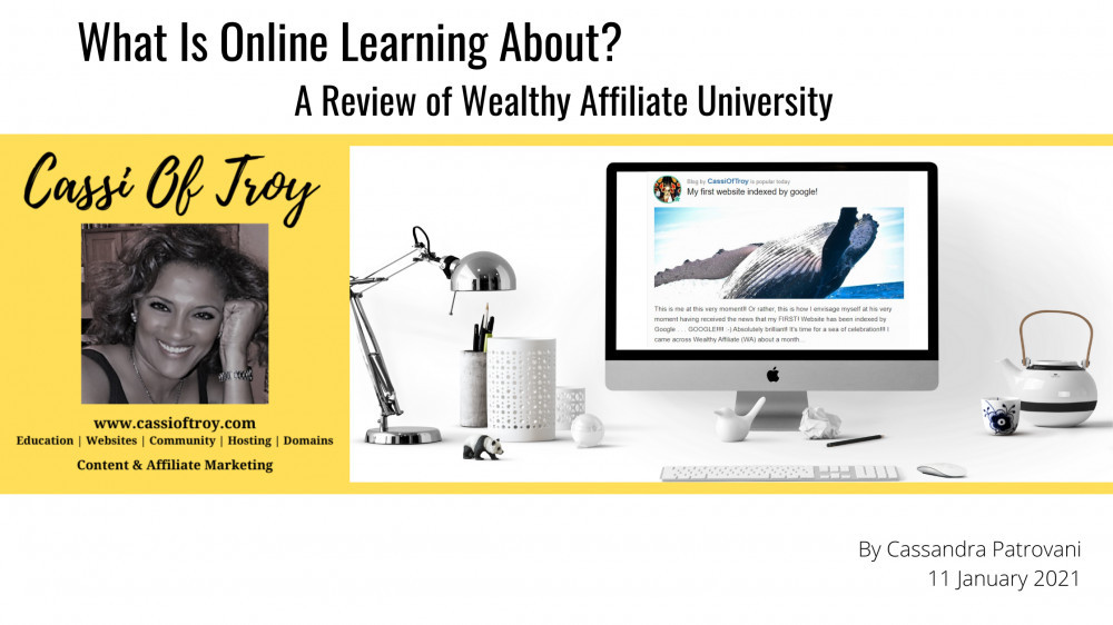 What Is Online Learning About?