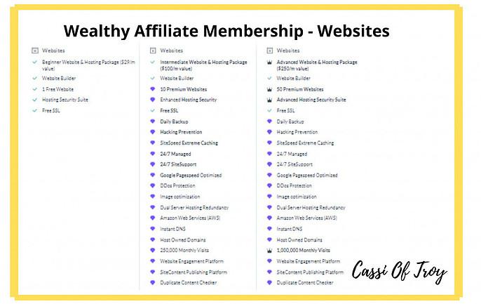 Wealthy Affiliate Membership Options - Websites