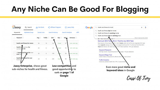 Any Niche Can Be Good For Blogging - Cassi Of Troy